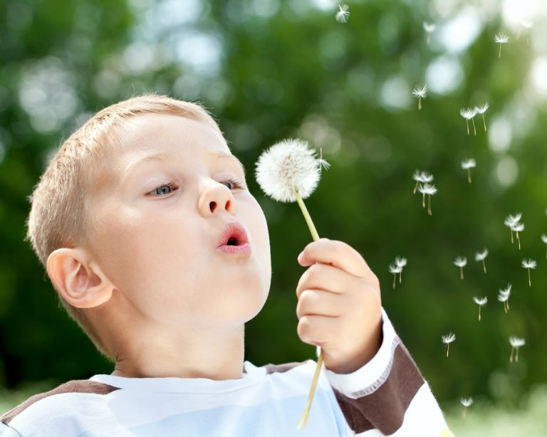 A natural semi occluded exercise - boy blows on a dandelion seed